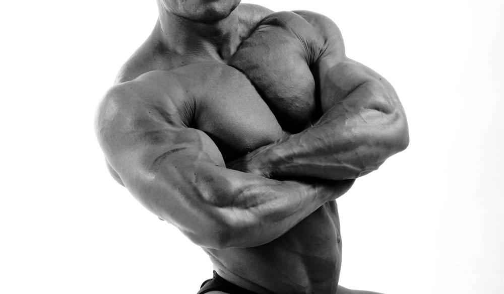 Порция белка через каждые три часа – лучший вариант для наращивания мышечной массы