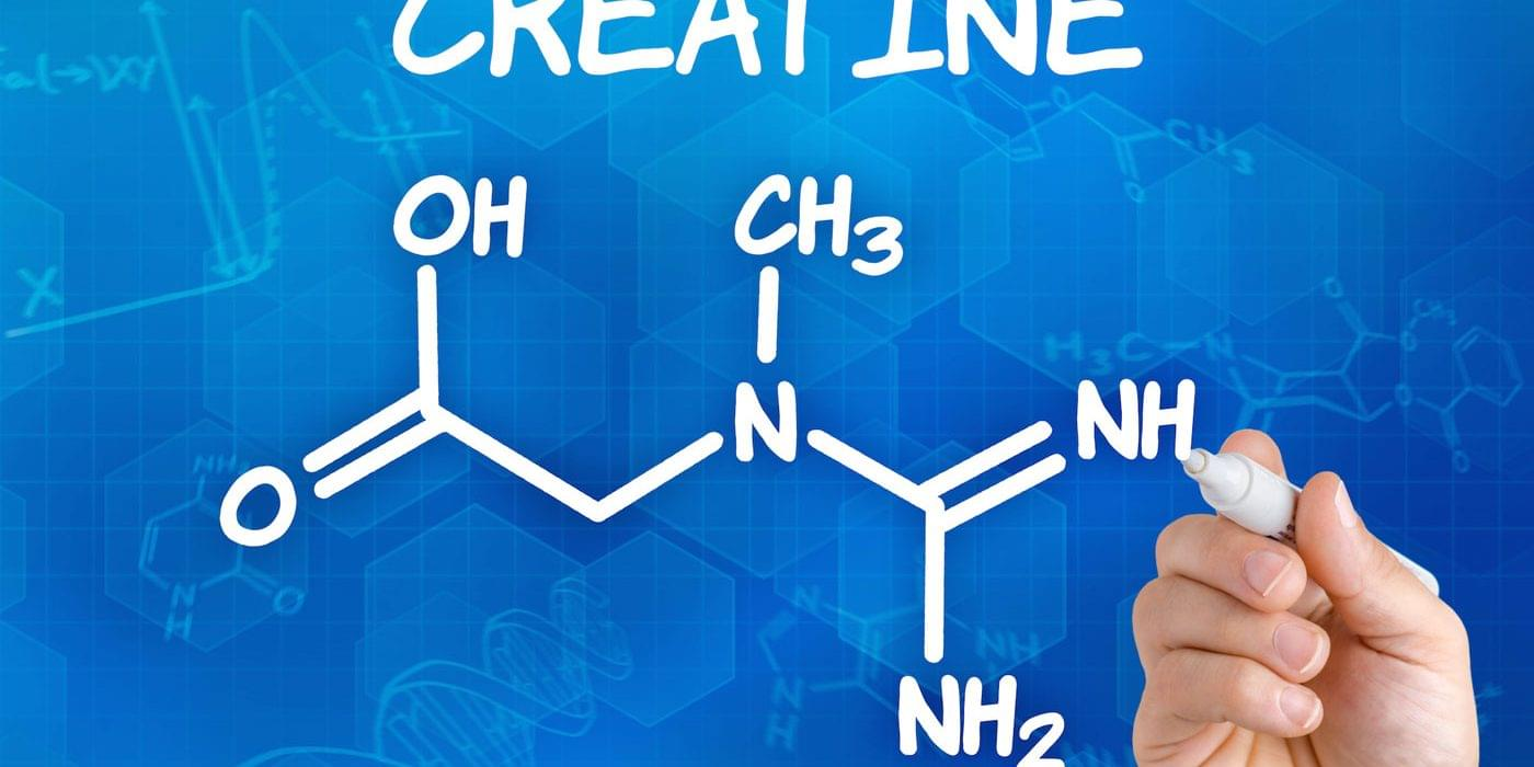 Креатин и дегидротестостерон