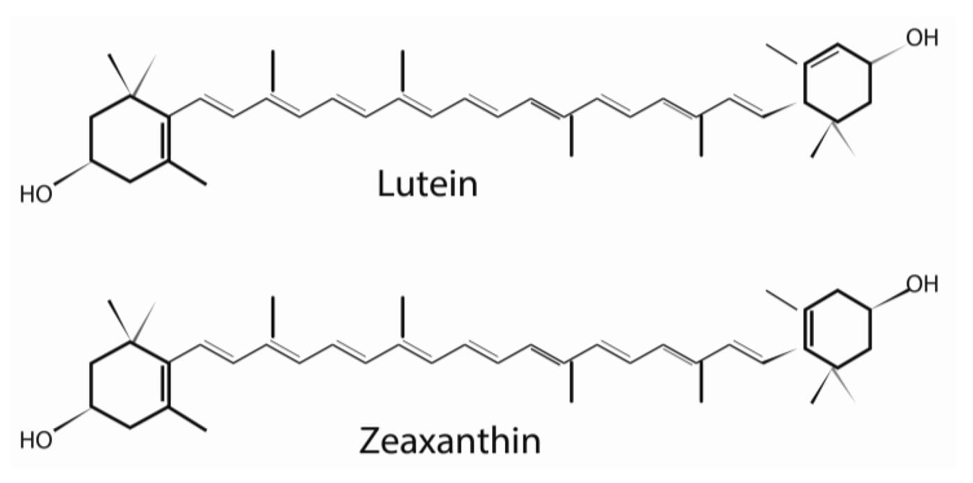 Лютеин и зеаксантин -«естественные солнцезащитные очки» для глаз