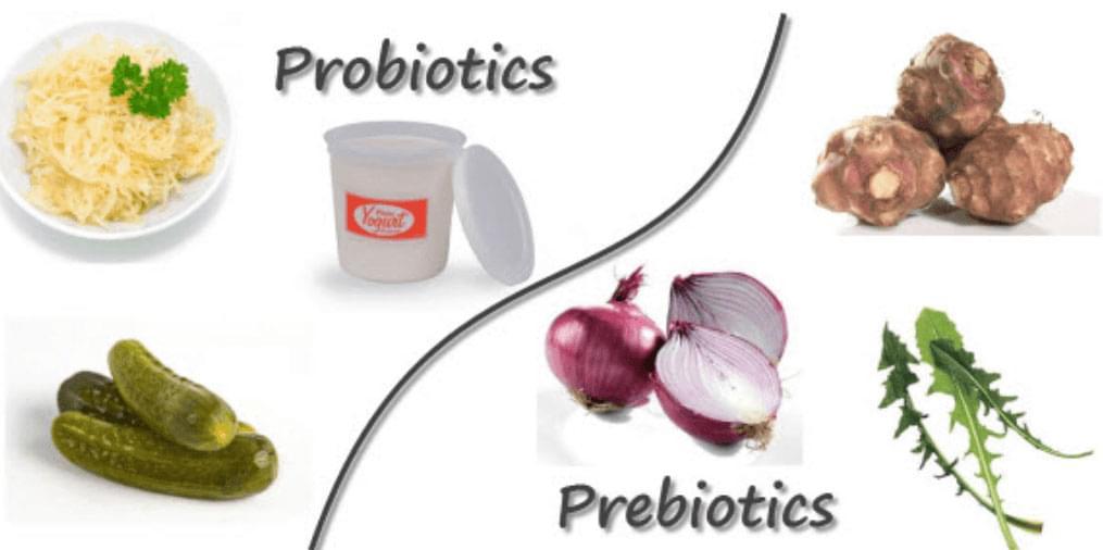 что такое симбиотики